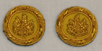 Mexican War Officer's Boards gold 2nd Lt